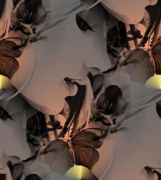 Butterflydiva3